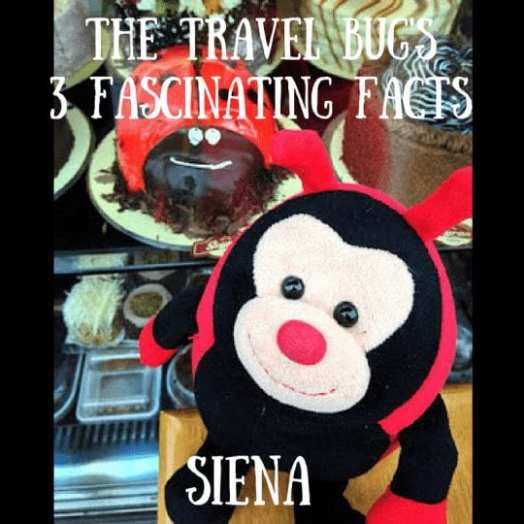 Travel Bug's 3 Fascinating Facts About Siena