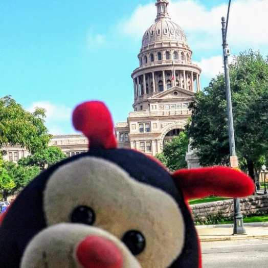 Travel Bug's 4 Fascinating Facts About Austin
