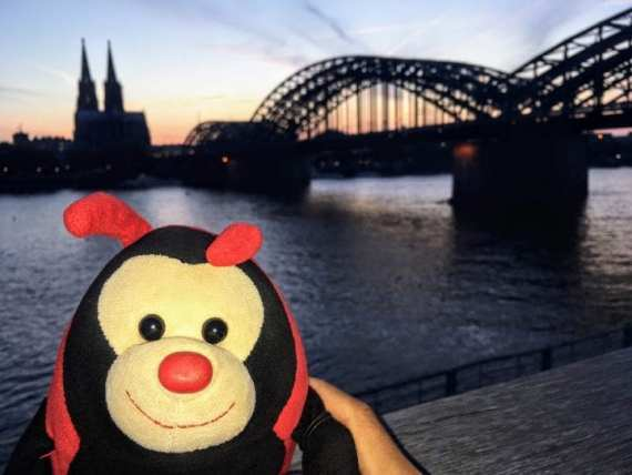 Travel Bug's 3 Fascinating Facts about Cologne