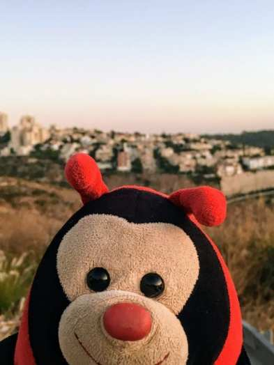 Travel Bug's 3 Fascinating Facts about Haifa