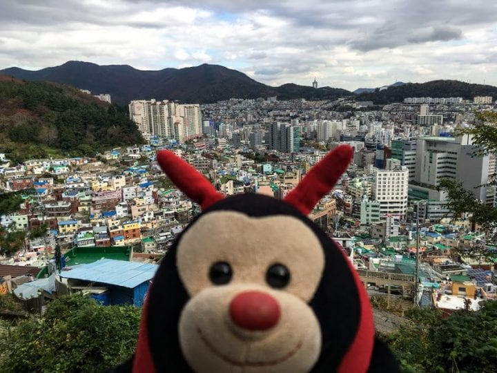 Travel Bug's 3 Fascinating Facts About Busan